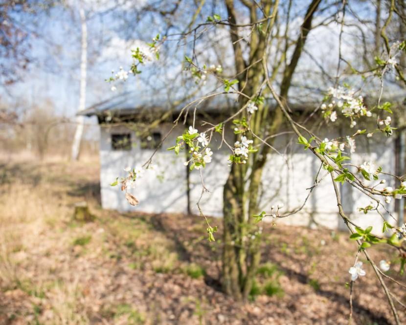 Soubor 5 chat vúchvatné přírodě uBrněnské přehrady