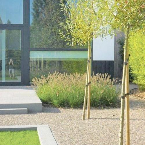Minimalistická zahrada